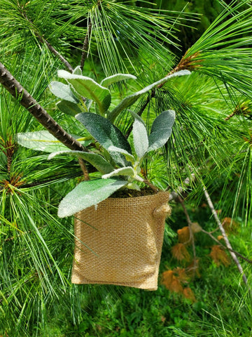 A2 - Herb Bag Ornament