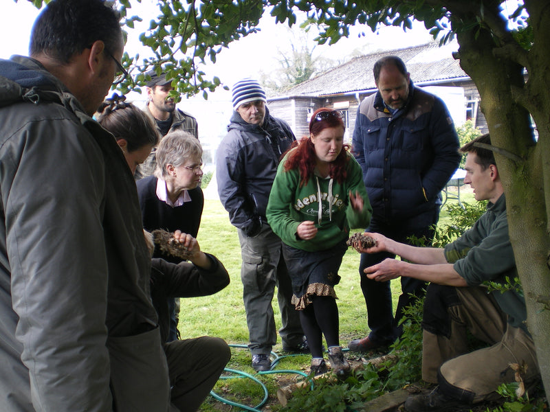 One Day Mushroom Growing Course @ GroCycle Mushroom Farm