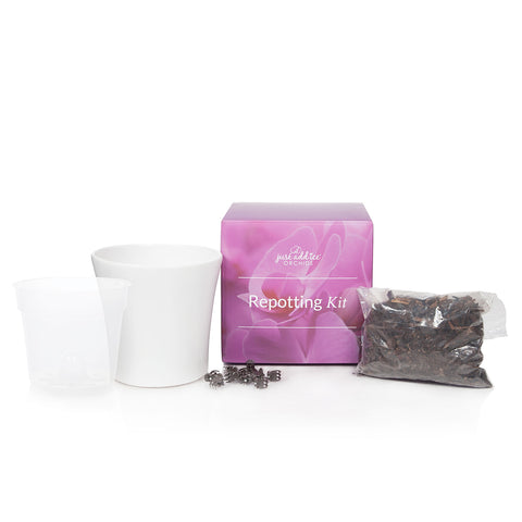 Repotting Kit for Premium Orchids