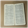 1st Edition Book, Pocket Dictionary, Fact Book, Little Giant Fact Book, 1920s Book