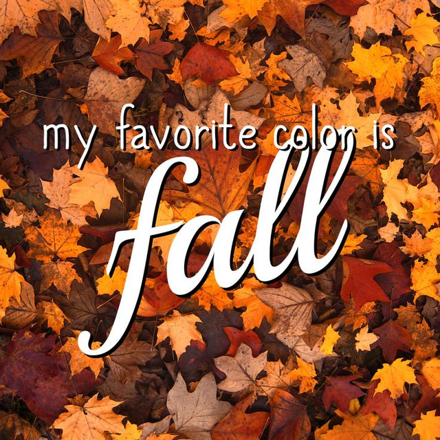 Image result for fall is my favorite color images