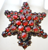 Victorian Garnet Star Gilt Brooch Pin - The Jewelry Lady's Store