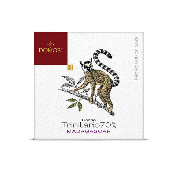 Domori Madagascar 70% Chocolate 25gr bar