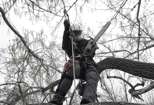 Chainsaw, rope access, tree work and workwear for arborists.