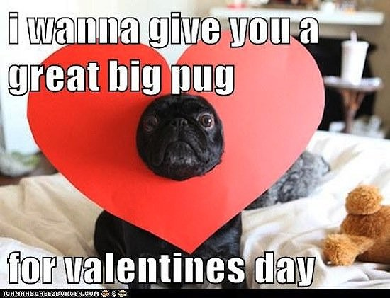 Photo Credit to Popsugar.com: http://www.popsugar.com/tech/Valentine-Day-Memes-27068355#photo-27068355
