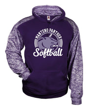 Sport Blend Hoodie with MHS Softball Design