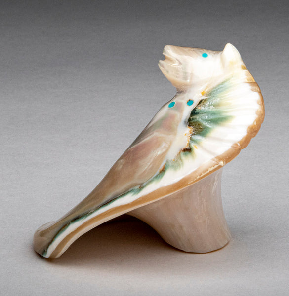 Sea Shell Pony