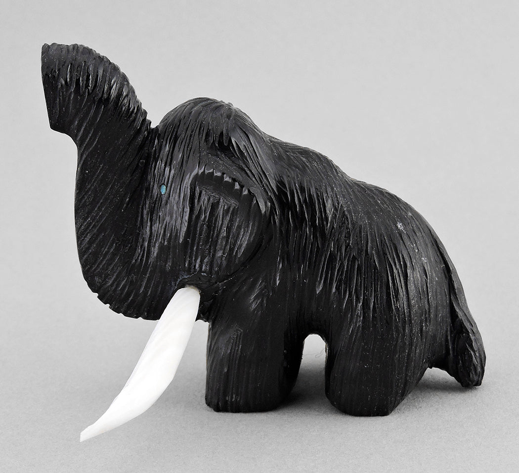Kind Wooly Mammoth