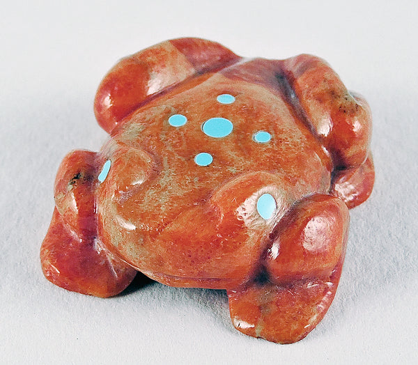 Apple Coral Frog