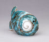 Pacific Green Snail Shell Fish