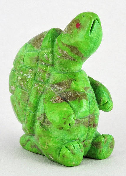 Patient Turtle of Mojave Green Turquoise