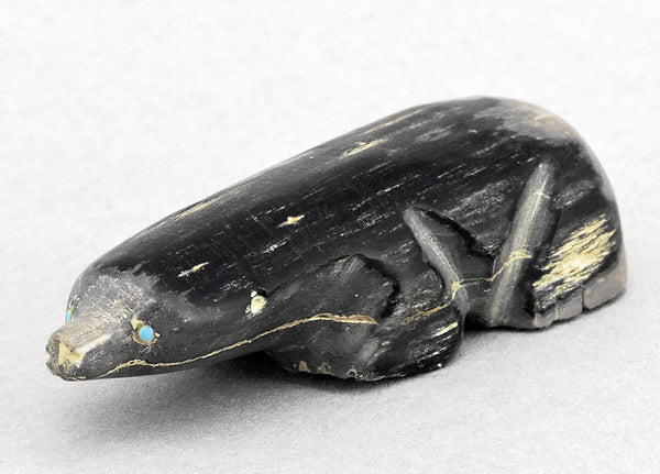Curious Mole of Fossilized Wood