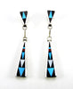 Elegant Inlaid Earrings