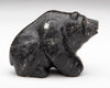 Found Obsidian Bear