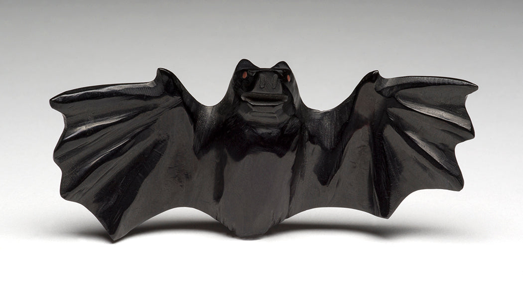 A Wide-Winged Bat