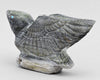Stately Eagle of Ricolite