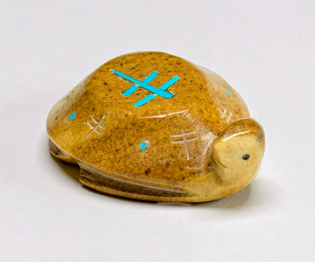 Serpentine Turtle with Dragonfly Blessings By Rhoda Quam(d)