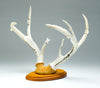 Antler Mount Of Eagles & Tablita Corn Maidens