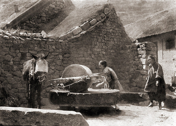 From Workhorse To Water Feature The History Behind Our