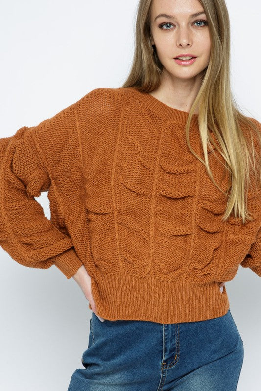 Rust Colored Shirred Crop Sweater
