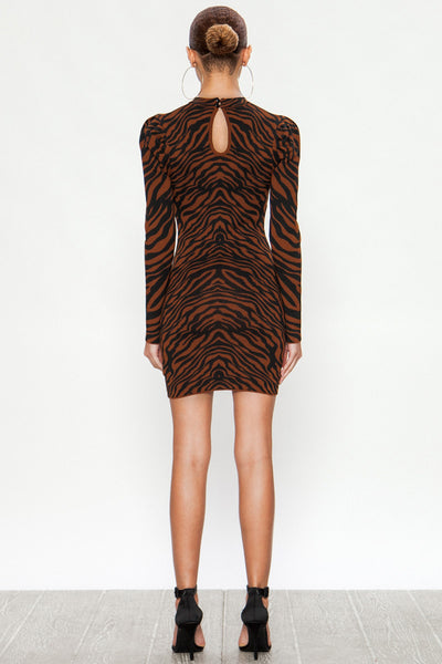 Tiger Striped Stretchy Mini Dress