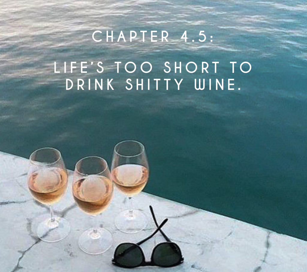 Chapter 4.5: Life's too short to drink shitty wine.