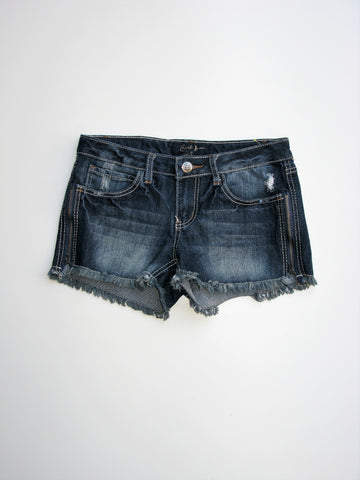Earl Jean Blue Cut-Off Distressed Zipper Jean Shorts 5