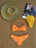 Tyler Rose Fever Mesh Bikini Top & Bottom M NWOT - ruby & sofia