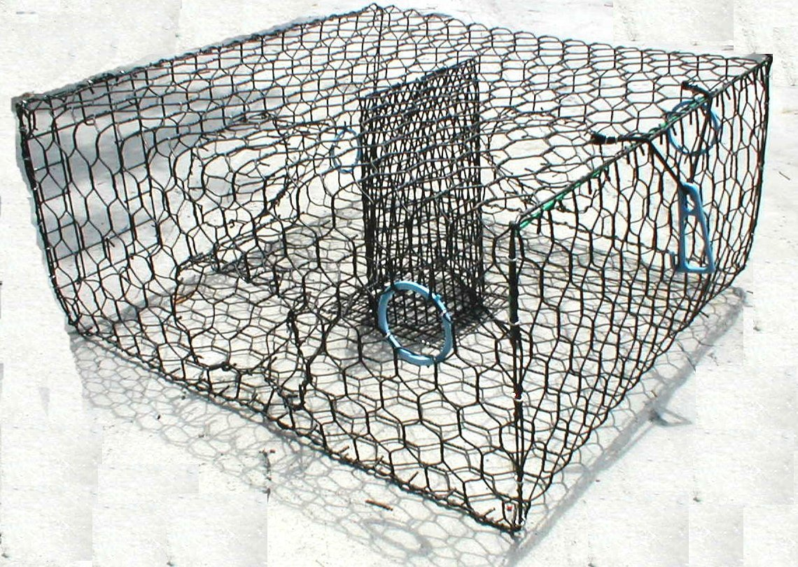 Blue Crab Trap - Galvanized or Vinyl Coated Wire Trap – Lee Fisher ...