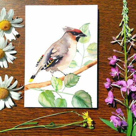 Greeting Card - Bohemian Waxwing