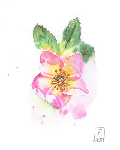 Tiny Original - Wild Rose