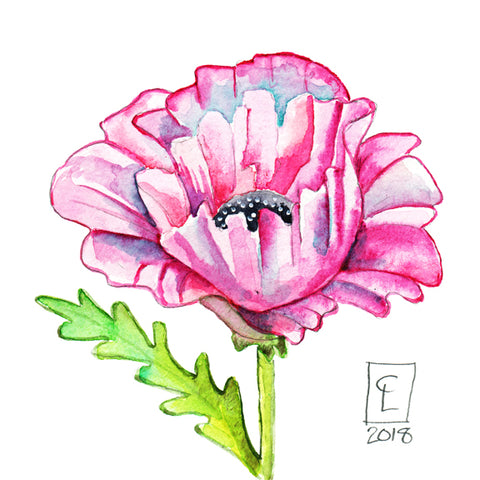 Tiny Original - Pink poppy