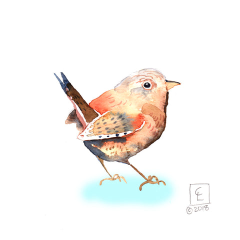 Tiny Original - 30 Birds - Wren
