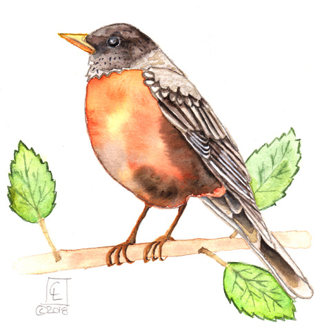 Tiny Original - 30 Birds - Robin