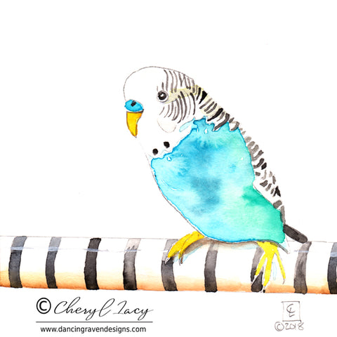 Tiny Original - 30 Birds - Parakeet