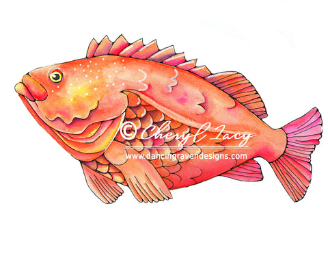 Yellow Eye Rockfish - Art Original