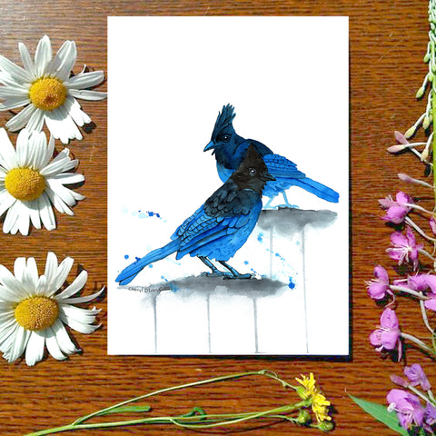 Stellars Jays - Greeting Card