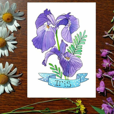 Greeting Card - Iris