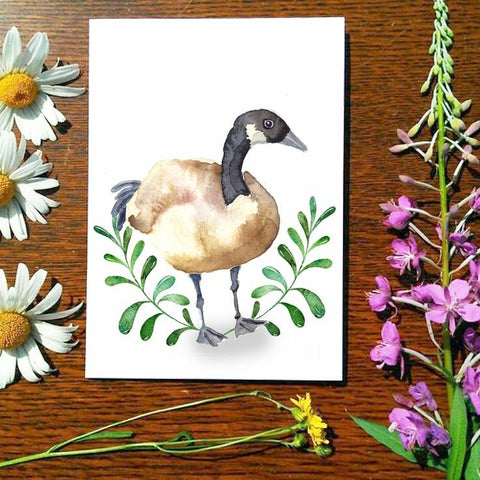 Greeting Card - Canada Goose