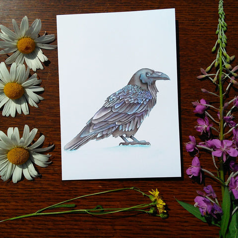 Greeting Card - Raven