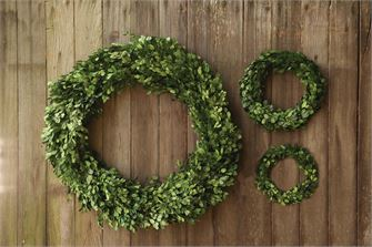 Preserved Boxwood Wreath - LG
