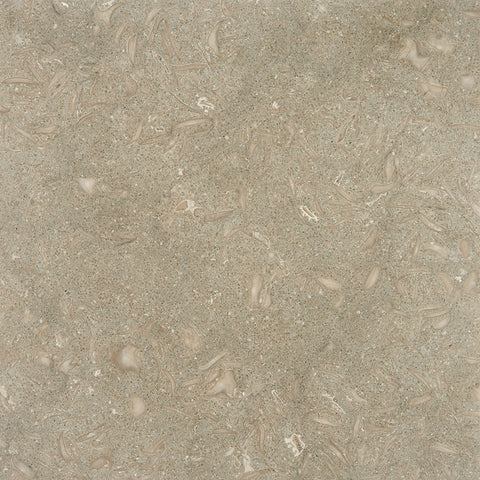 12 x 12 Honed Seagrass Limestone Tile - DEKO Tile