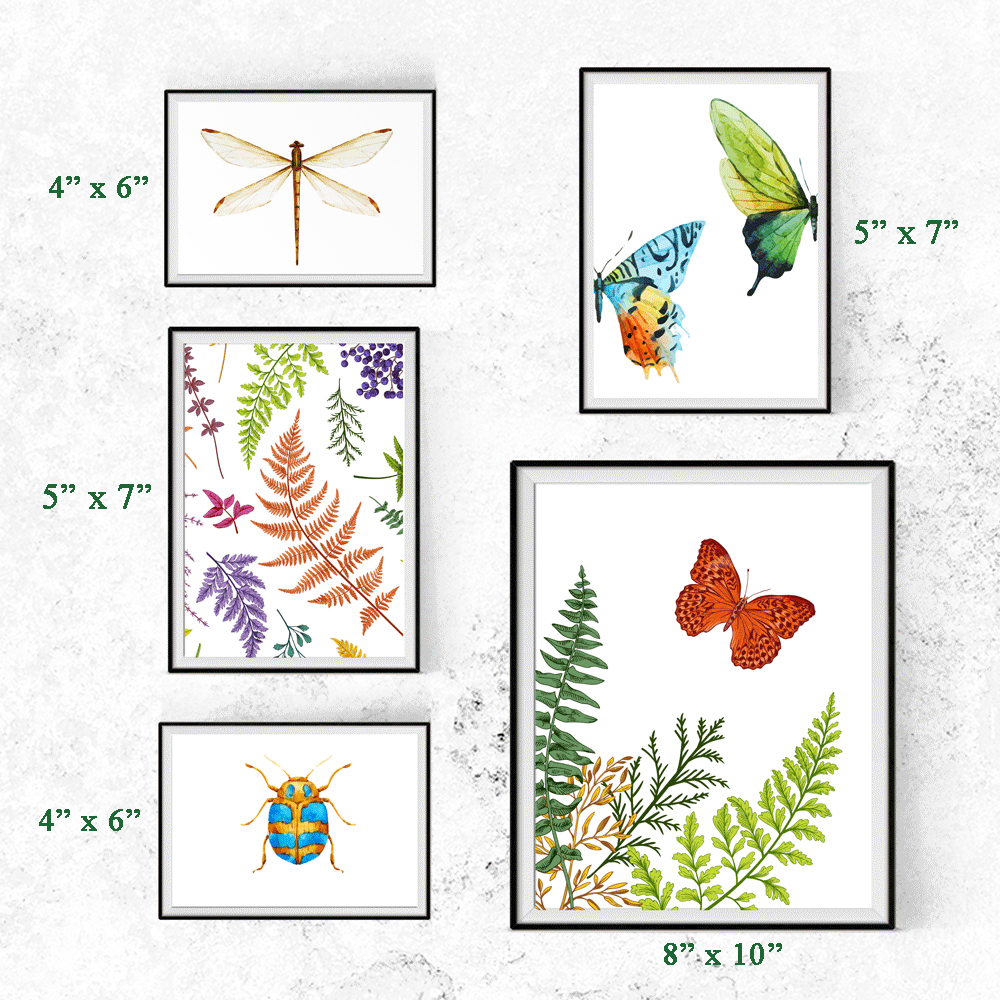 Nature Insects and Ferns Wall Art Print
