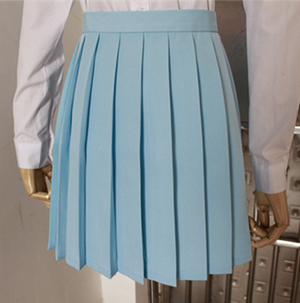 Uniform Pleated Skirt SE6484