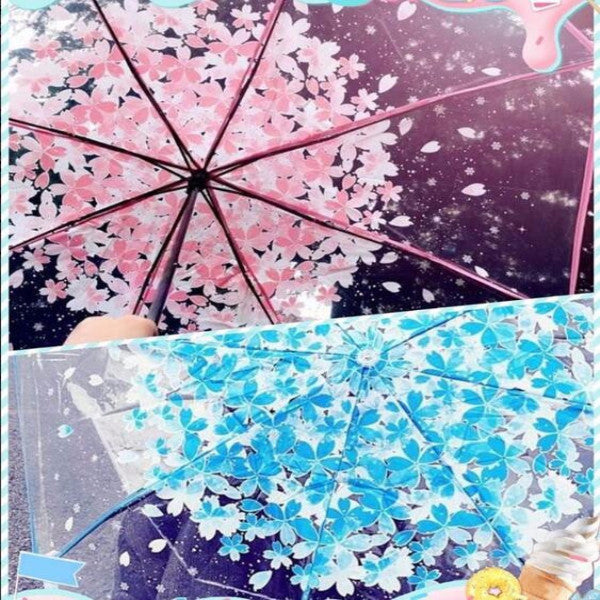 Sweet cherry blossom students transparent umbrella