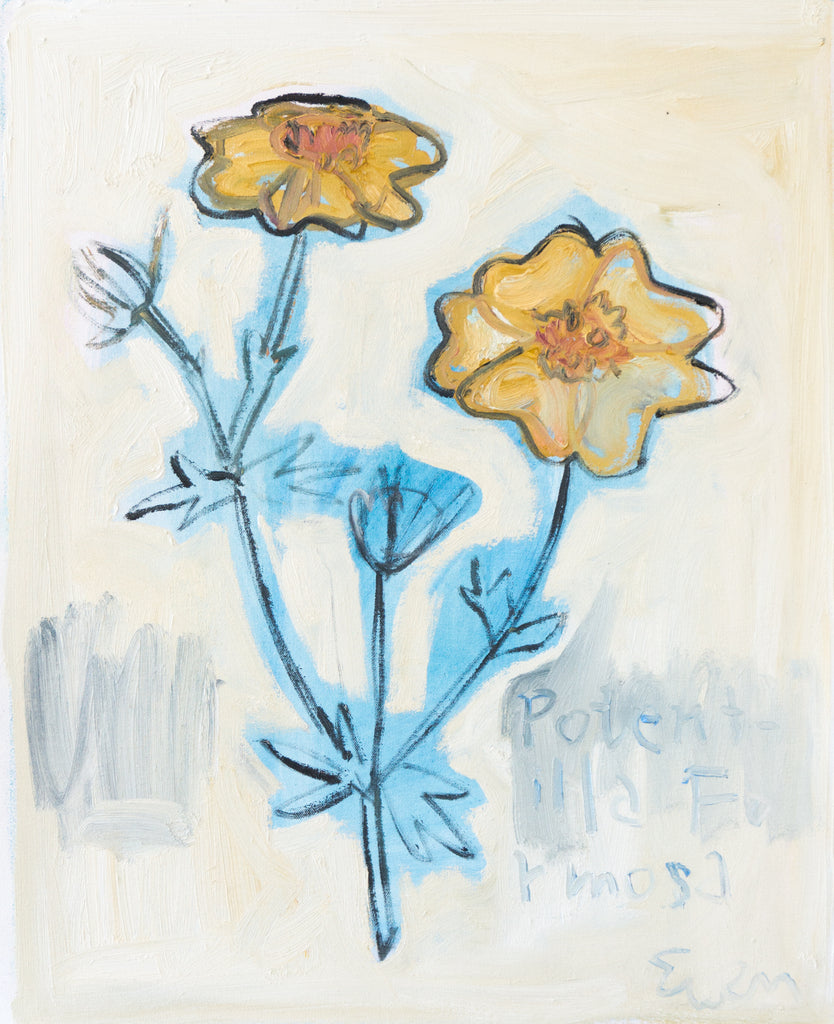 Painting // Potentilla Formosa (Buttercup Flower)