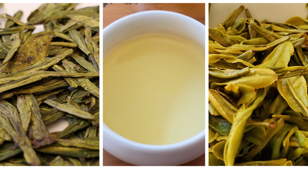 Loose leaf and steeped cup of Dragonwell Superior Chinese green tea