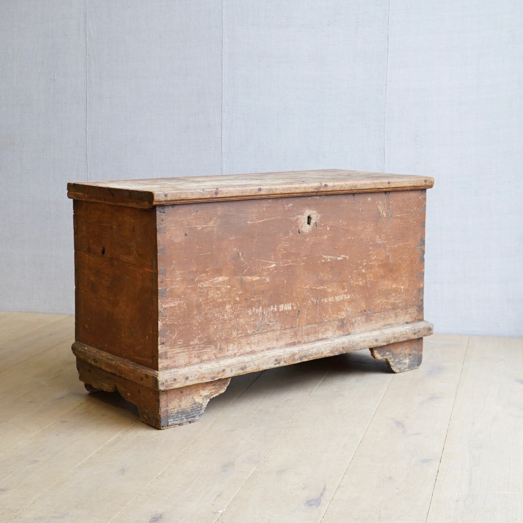 European Painted Trunk