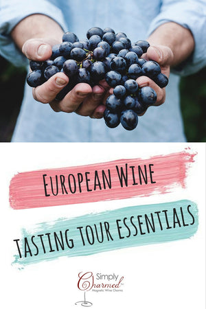 European Wine Tasting Tour Essentials