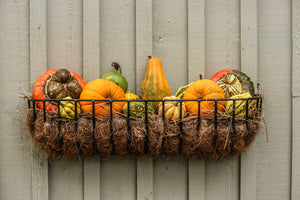 Best Fall Decorating Tips on a Budget